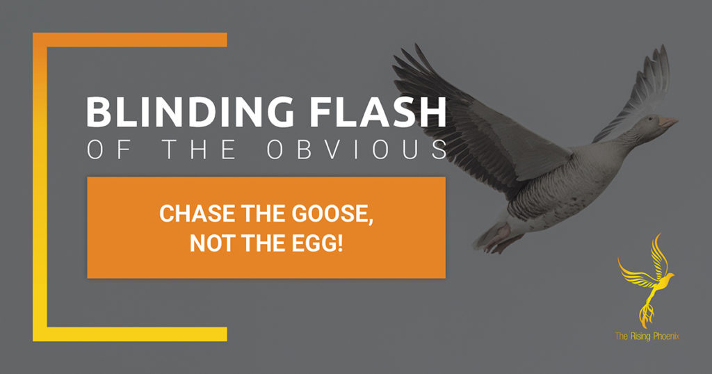 Chase the goose and not the egg